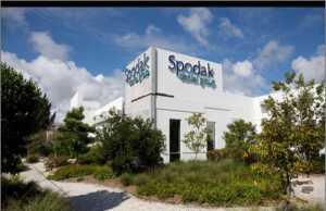 Spodak Dental Group - Florida
