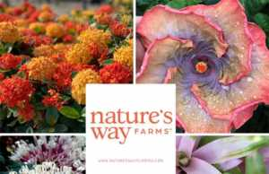 Nature's Way Farms - Florida
